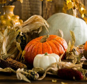 Giving Thanks, The Dante Law Firm, P.A.